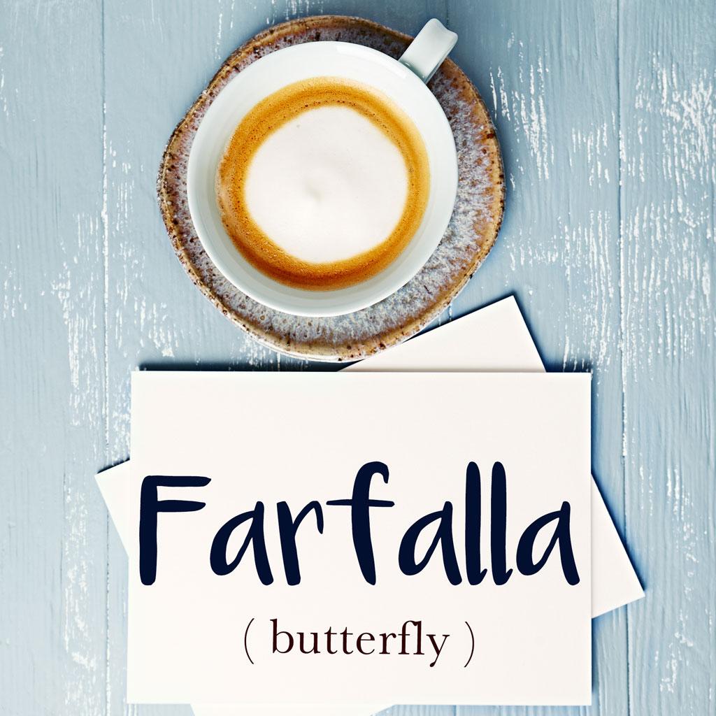 italian-word-for-butterfly-farfalla