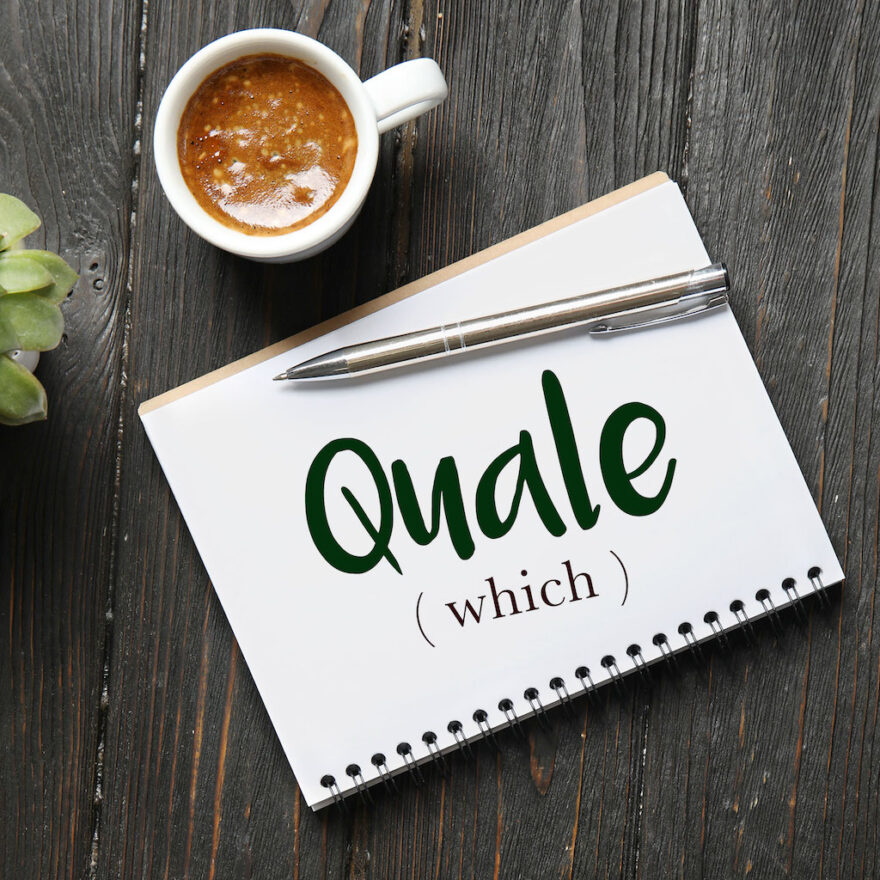 italian-word-for-which-quale