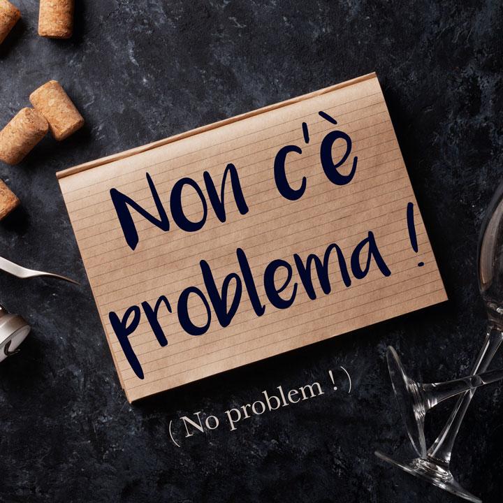 italian for no problem is non c'e problema