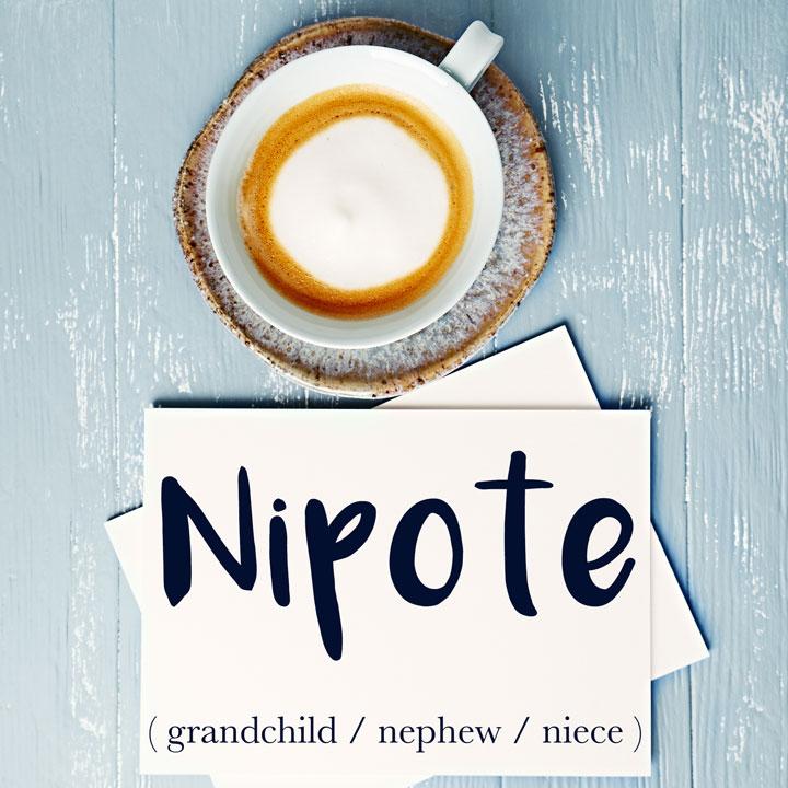 italian word for grandchild nipote