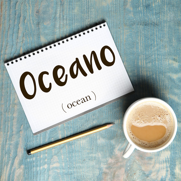 Italian Word of the Day: Oceano (ocean)