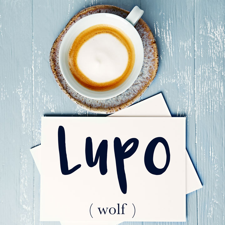 Italian Word of the Day: Lupo (wolf)