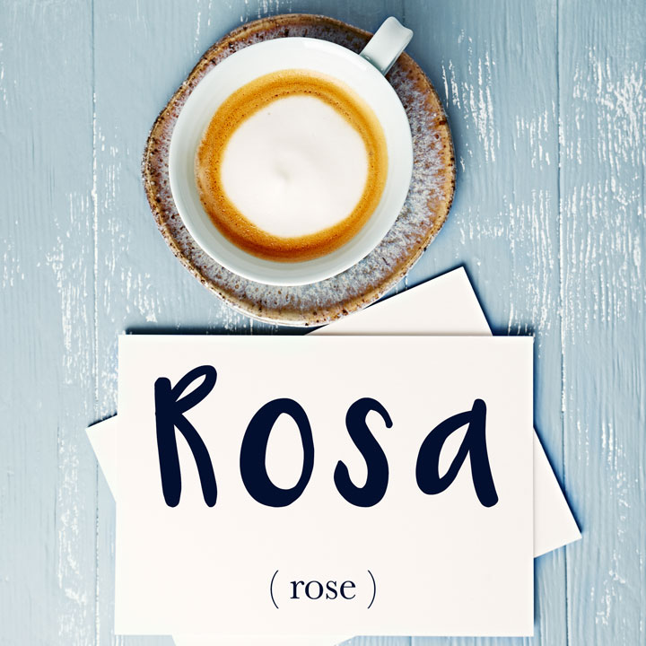 Italian Word Of The Day Rosa Rose Daily Italian Words