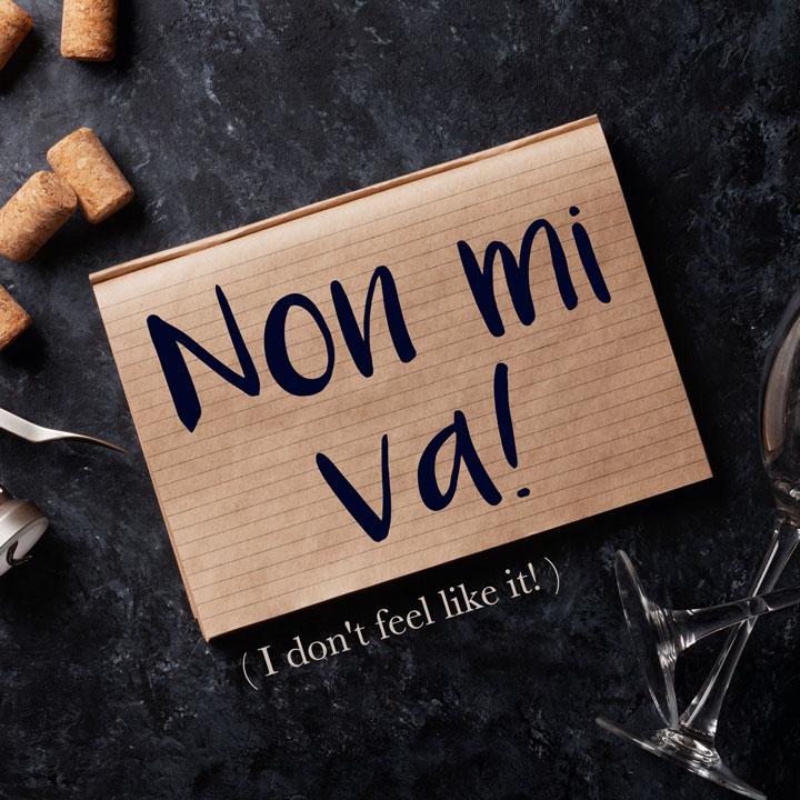 Italian Phrase of the Week: Non mi va! (I don't feel like it!)