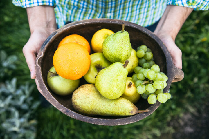 hands holding a bowl full of fruits