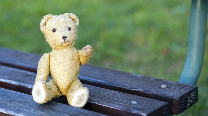 teddy bear on a bench
