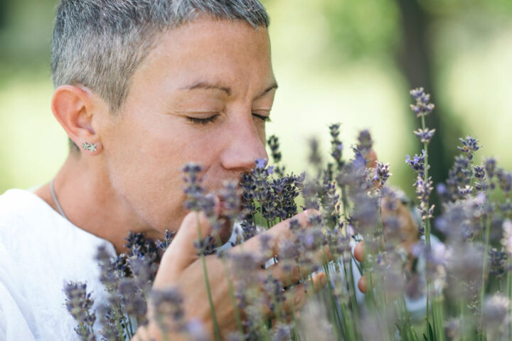 middle-aged woman breaths in lavender flowers