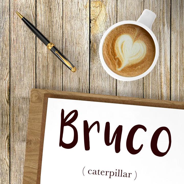 Italian Word of the Day: Bruco (caterpillar)