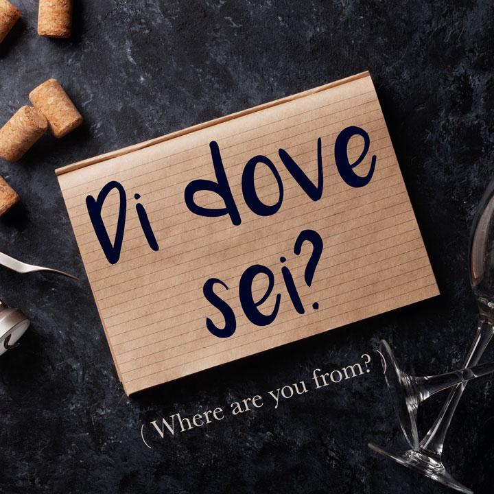 Italian Phrase: Di dove sei? (Where are you from?)