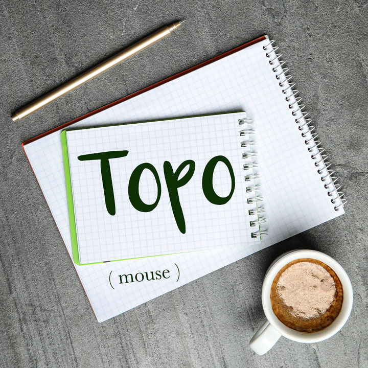 Italian Word of the Day: Topo (mouse)