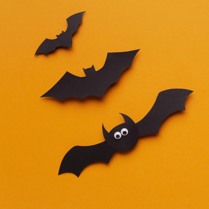 Close up of funny Halloween bats flying up on orange background
