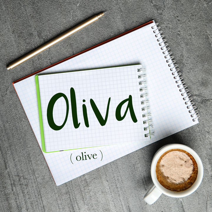 Italian Word of the Day: Oliva (olive)