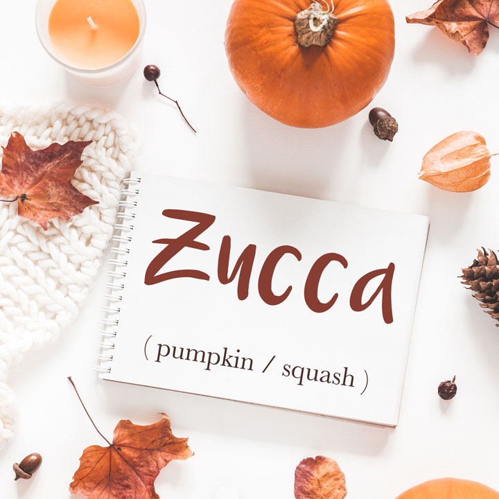 Italian Word of the Day: Zucca (pumpkin / squash)
