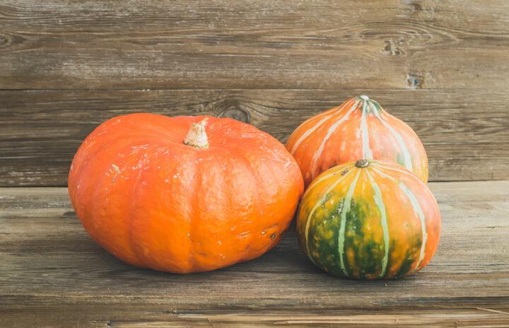 Autumn pumpkins on a wooden desk