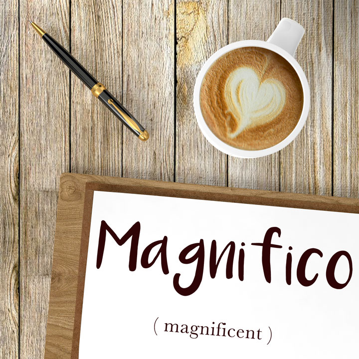 Italian Word of the Day: Magnifico (magnificent)