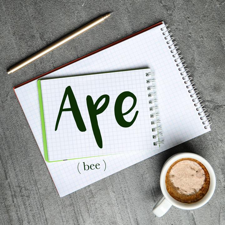 Italian Word of the Day: Ape (bee)