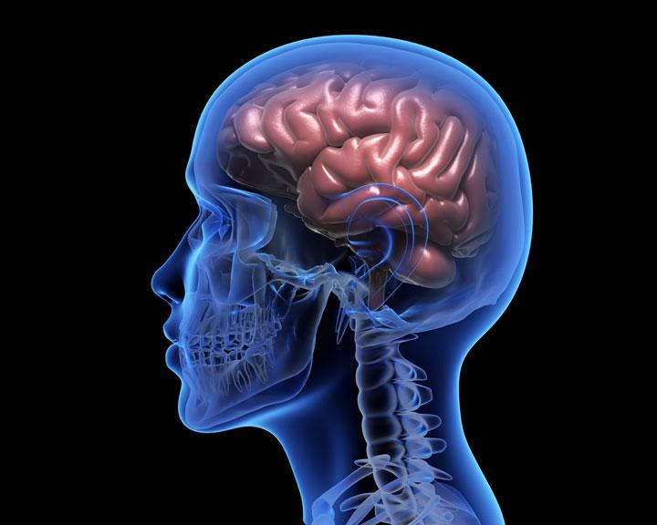 3D illustration of human brain over black background