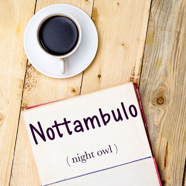 Italian Word of the Day: Nottambulo (night owl)