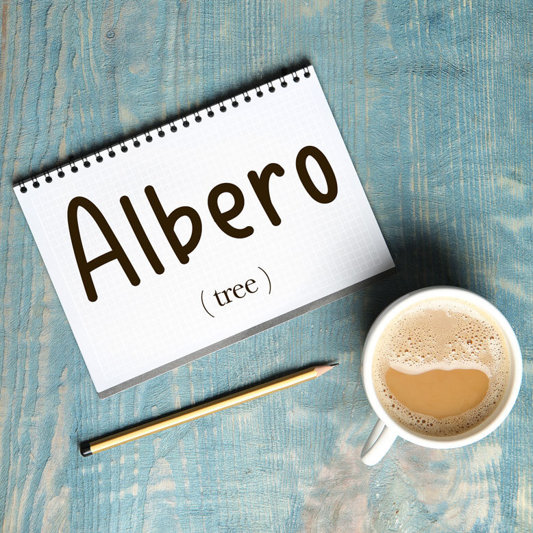 """cover image with the word """"albero"""" and its translation written on a notepad next to a cup of cofee"""