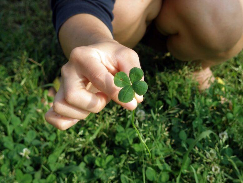 hand holding a four-leaf clover