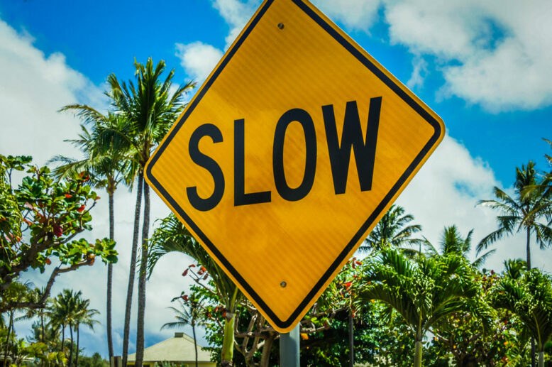 slow yellow road sign with palm trees in the background