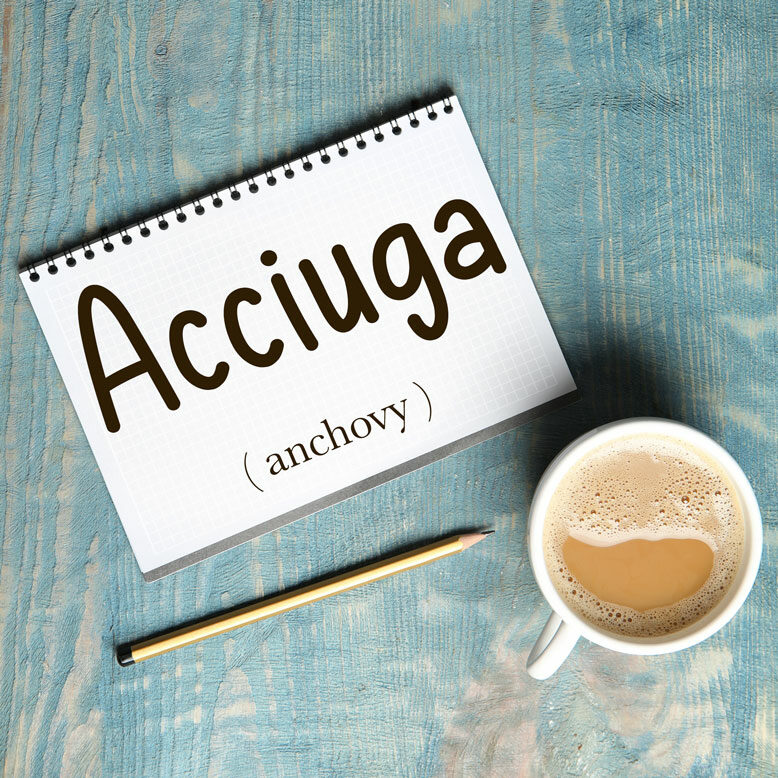 """cover image with the word """"acciuga"""" and its translation written on a notepad next to a cup of coffee"""